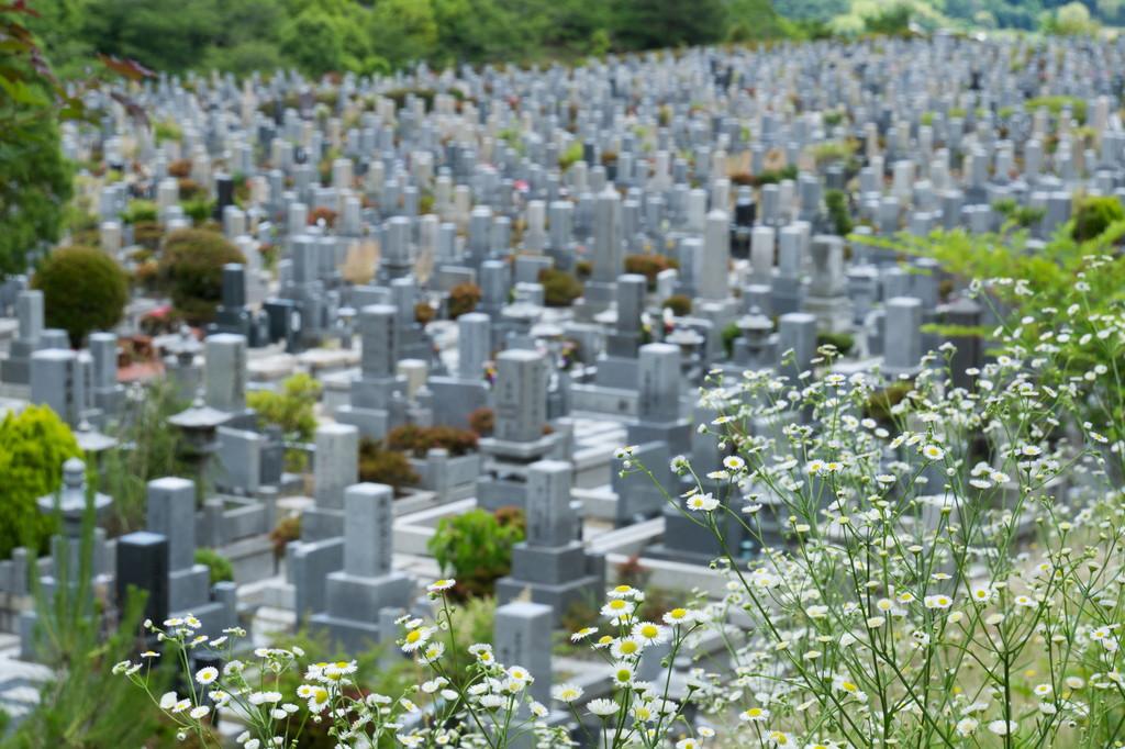 集合墓の特徴や種類をメリットやデメリットを交えてわかりやすく解説
